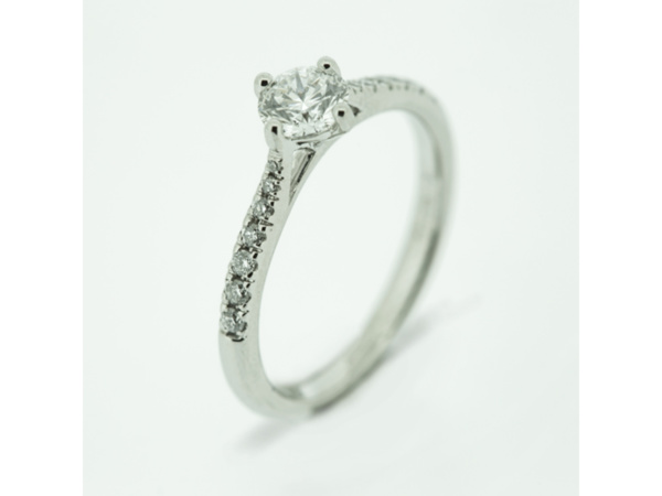 Brilliant Cut Diamond Ring with NSEW Claws